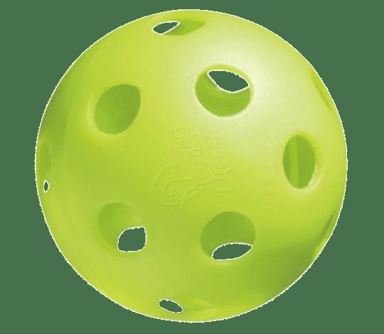 picleball-pic